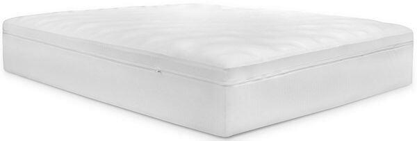 bear-mattress-encasement
