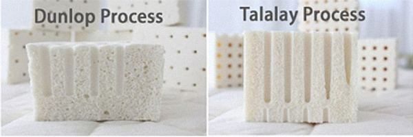 Dunlop latex vs Talalay latex