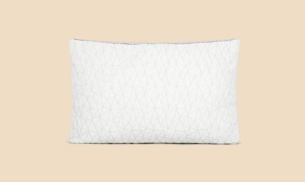 Coop-Eden-pillow